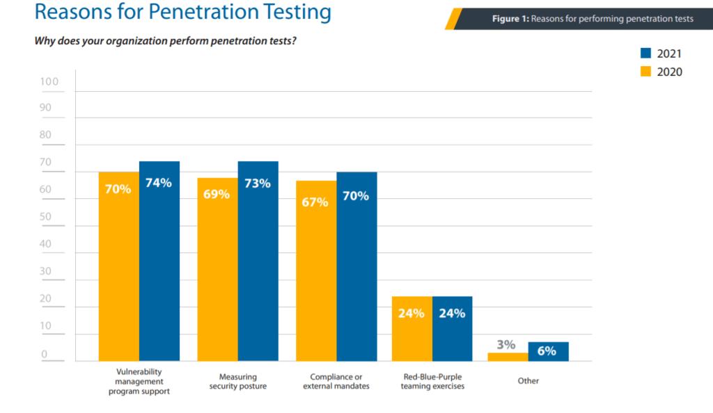 Reasons for Penetration Testing - Berezha Security